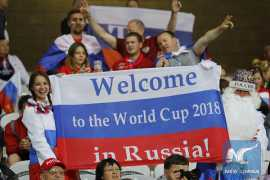 Visa-free system for 2018 World Cup in Russia